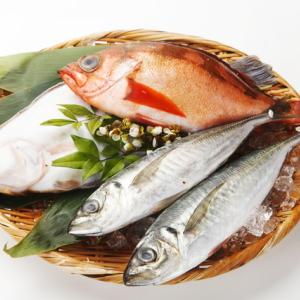 魚をさばく♪お魚♡お料理教室